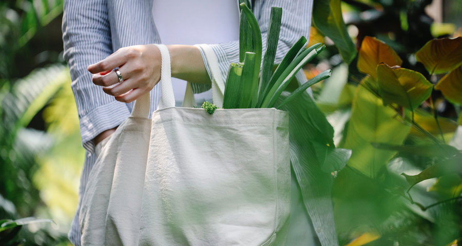 Why You Should Embrace the Green Lifestyle
